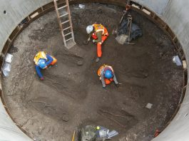 Skeletons of Black Death victims found during construction of Farringdon Station in Charterhouse Square _68216
